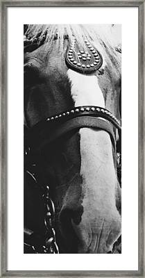 White Stripe Black And White Framed Print by TelAvivPaparazzi Photography