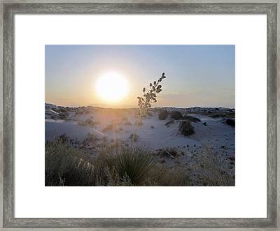 White Sunset Framed Print by Mike Podhorzer