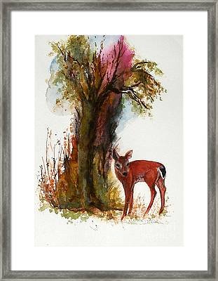 White Tail Framed Print by Sibby S