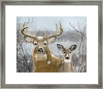 White Tail Winter Framed Print by Eric Smith