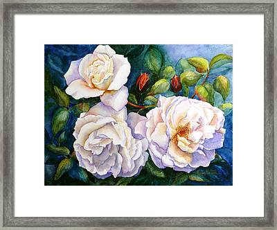 White Teas Rose Tree Framed Print by Karen Mattson