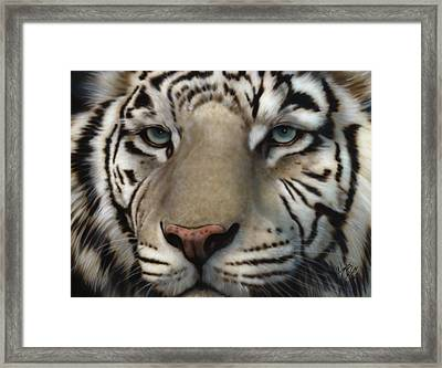 White Tiger - Up Close And Personal Framed Print