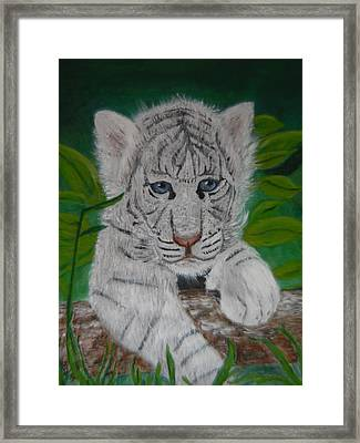 Framed Print featuring the painting White Tiger Cub by Mary M Collins