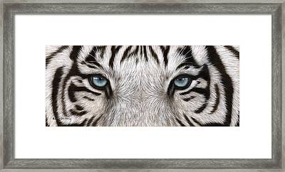 White Tiger Eyes Painting Framed Print