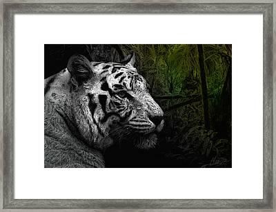 White Tiger Framed Print by Marina Likholat