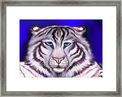 White Tiger Framed Print by Nick Gustafson
