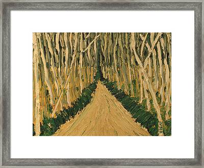 White Trees Framed Print