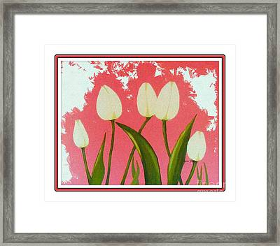 White Tulips Dance In The Sun Framed Print by Barbara Griffin