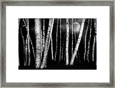 White Walls Framed Print by Diana Angstadt