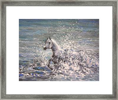 White Wild Horse Framed Print by Miki De Goodaboom