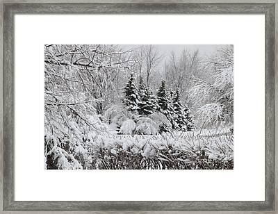 White Winter Day Framed Print