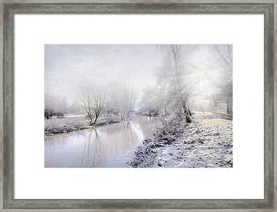 White Winter Framed Print by Svetlana Sewell