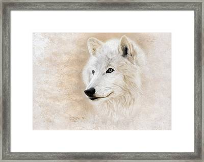 White Wolf Framed Print