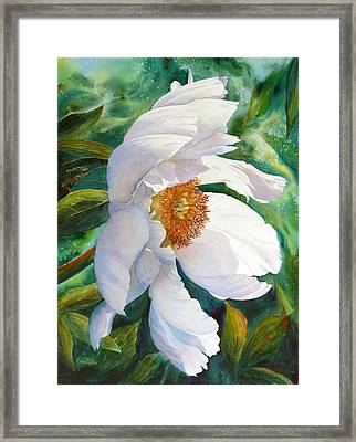 White Wonder Framed Print by Karen Mattson