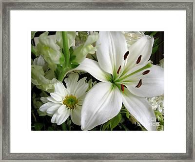 White Wonder Framed Print by Rory Sagner