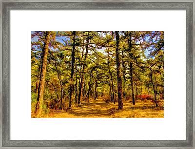Whitebog Village Woods  Framed Print by Geraldine Scull