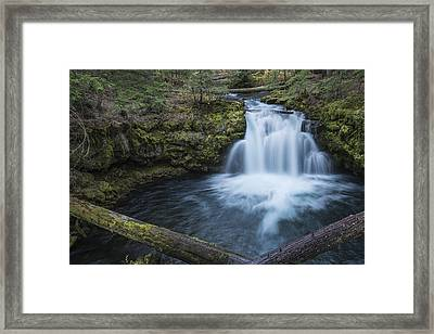 Whitehorse Falls Evening Framed Print by Loree Johnson