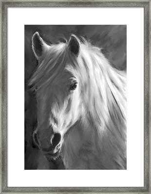 Whitehorse Framed Print