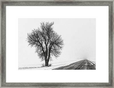 Whiteout Framed Print by Chris Austin