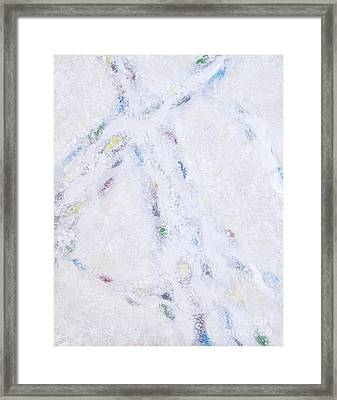 Whiteout Framed Print by Cindy Lee Longhini