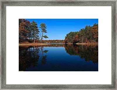 Whites Pond Framed Print by Corey Sheehan