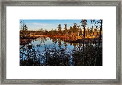 Whitesbog In The Fall Framed Print by Louis Dallara