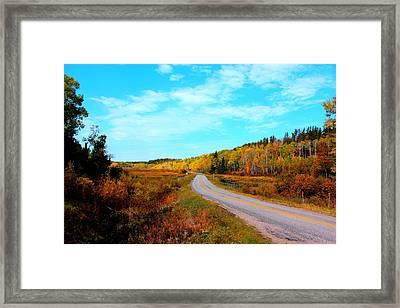 Whiteshell Provincial Park Framed Print by Larry Trupp
