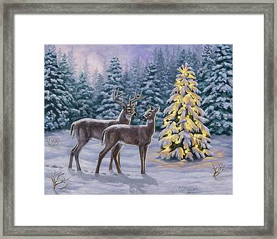 Whitetail Christmas Framed Print by Crista Forest