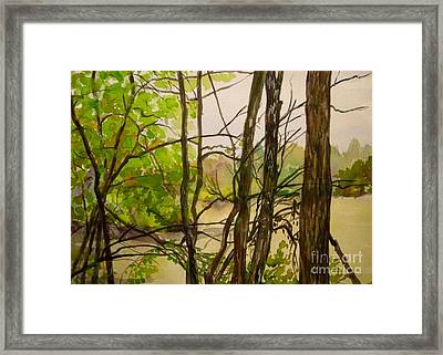 Whitewater Memorial State Park Framed Print by Katrina West