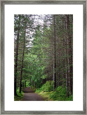 Whither? Framed Print