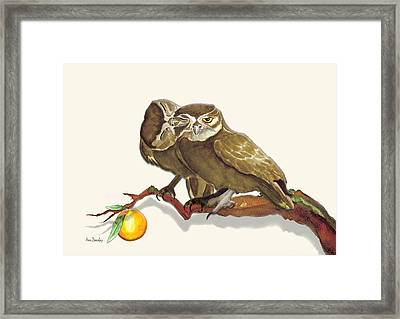 Who And Whoo Framed Print