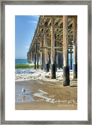 Who Are You Looking At Framed Print by David Zanzinger