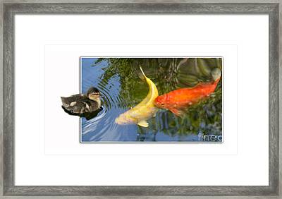 Framed Print featuring the photograph Who Are You? by Mariarosa Rockefeller