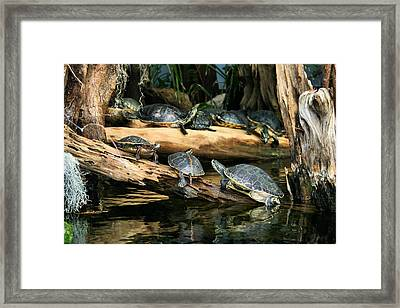 Who Called This Meeting Anyway Framed Print by Kristin Elmquist