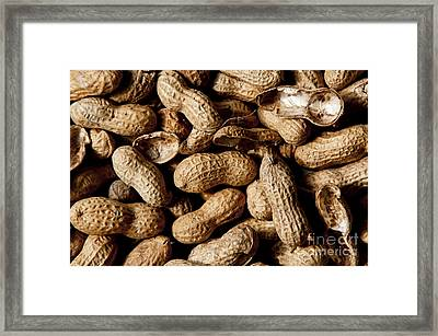 Who Can Eat Just One Framed Print by Wilma  Birdwell