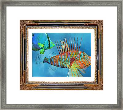 Who Framed The Fishes Framed Print by Betsy Knapp
