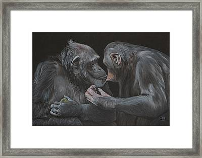 Who Gives A Fig? Framed Print by Jill Parry