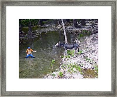 Framed Print featuring the photograph Who Is More Stubborn by John Glass