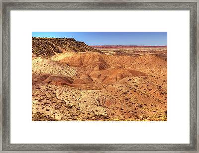 Who Is Watching Framed Print
