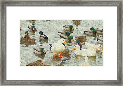 Who S On First Base Framed Print by Rosemarie E Seppala