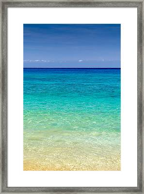 Who Wants To Go For A Swim? Framed Print