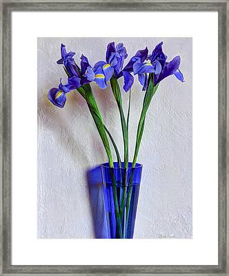 Who Would Have Thought I Have A Second Blue Vase Framed Print by Heidi Smith