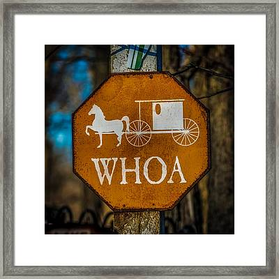 Whoa Framed Print by Paul Freidlund