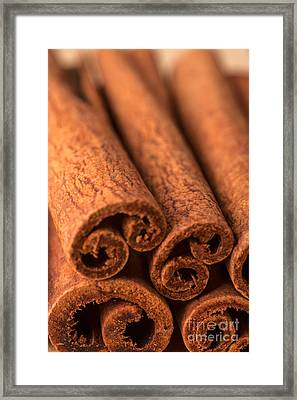 Whole Cinnamon Sticks  Framed Print by Iris Richardson