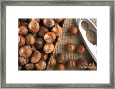 Whole Hazelnuts Framed Print by Charlotte Lake