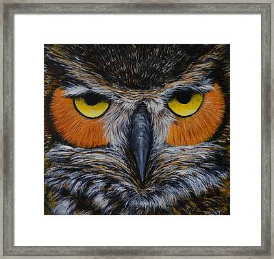 Whooo Is Looking At You? Framed Print