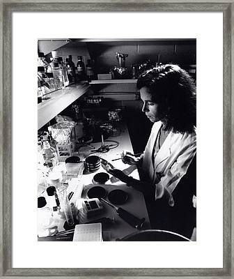Whooping Cough Research Framed Print by Food & Drug Administration