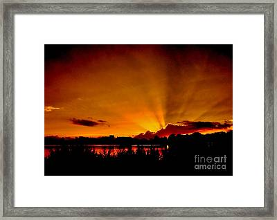 Who's Singing  Framed Print
