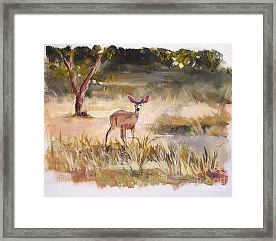 Who's There Framed Print by Jennifer Beaudet