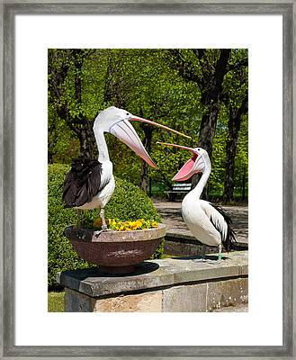 Why Are You Yelling On Me Framed Print by Iryna Soltyska